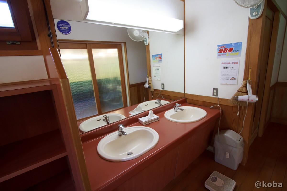 洗面所ドライヤー 有り 開運の湯(かいうんのゆ)日帰り入浴 栃木 日光 ブログ