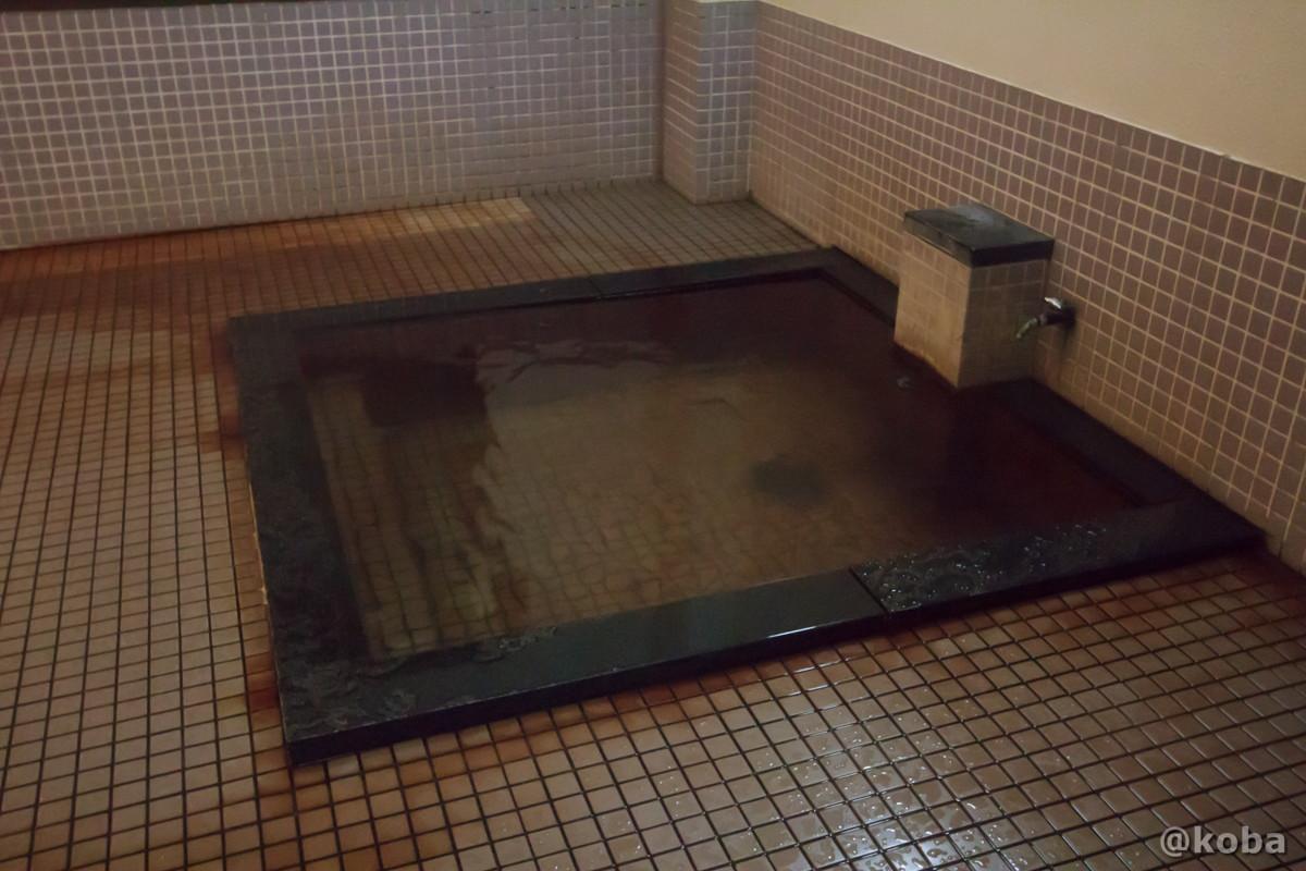 浴槽の写真│湯沢共同浴場(ゆざわきょうどうよくじょう)│新潟県 温泉ブログ