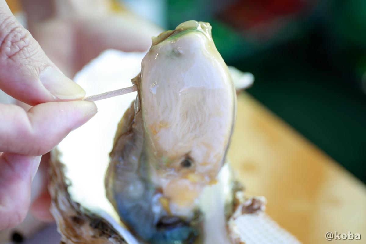 牡蠣を楊枝で持ち上げたの写真│寺泊中央水産│寺泊魚の市場通り 魚のアメ横(てらどまりさかなのいちばどおり さかなのあめよこ)