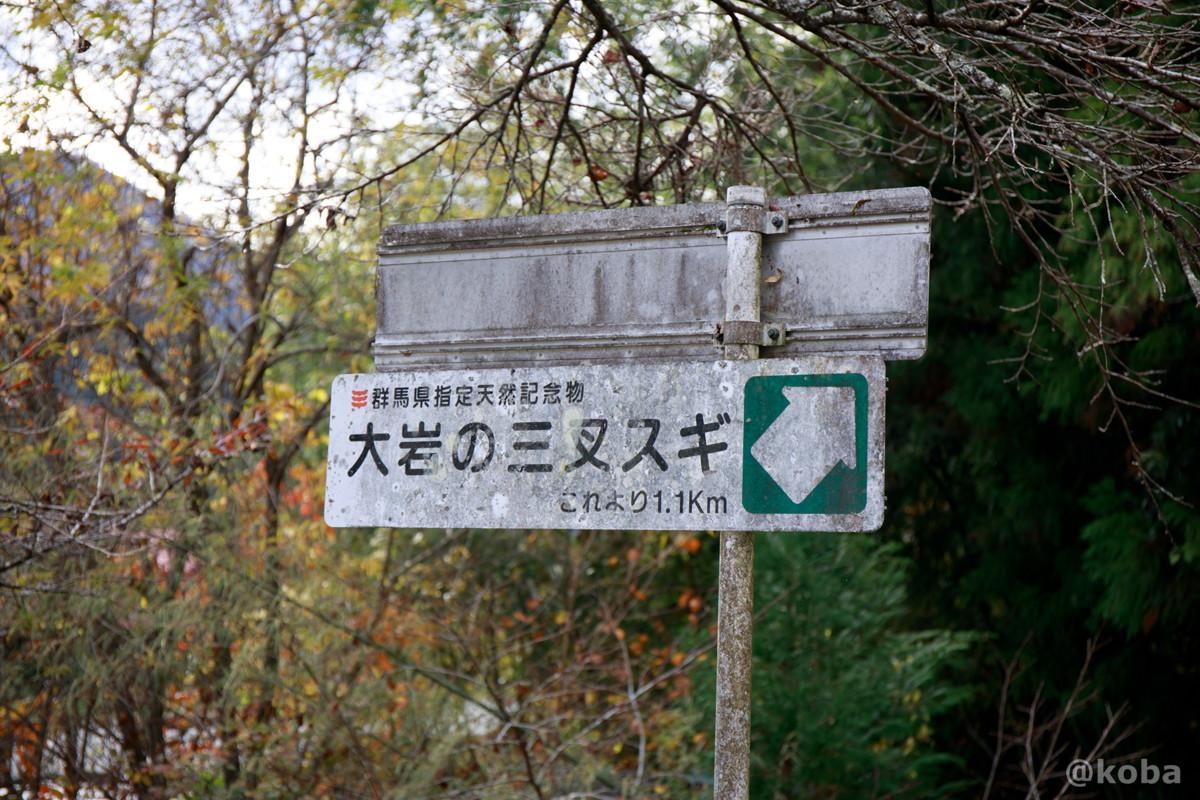 大岩の三又スギまで、これより1.1キロメートル、看板の写真│大岩不動尊(おおいわふどうそん)│群馬県 ブログ