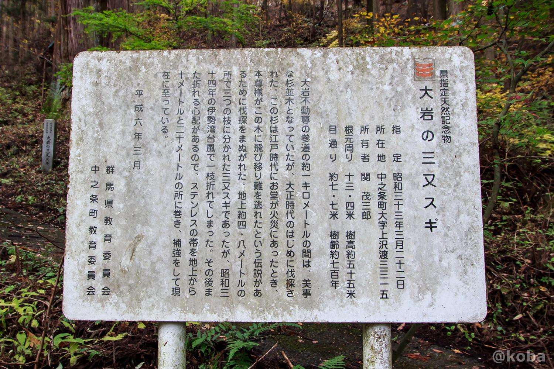 大岩の三又スギ、県指定天然記念物、説明看板の写真│大岩不動尊(おおいわふどうそん)│群馬県 ブログ