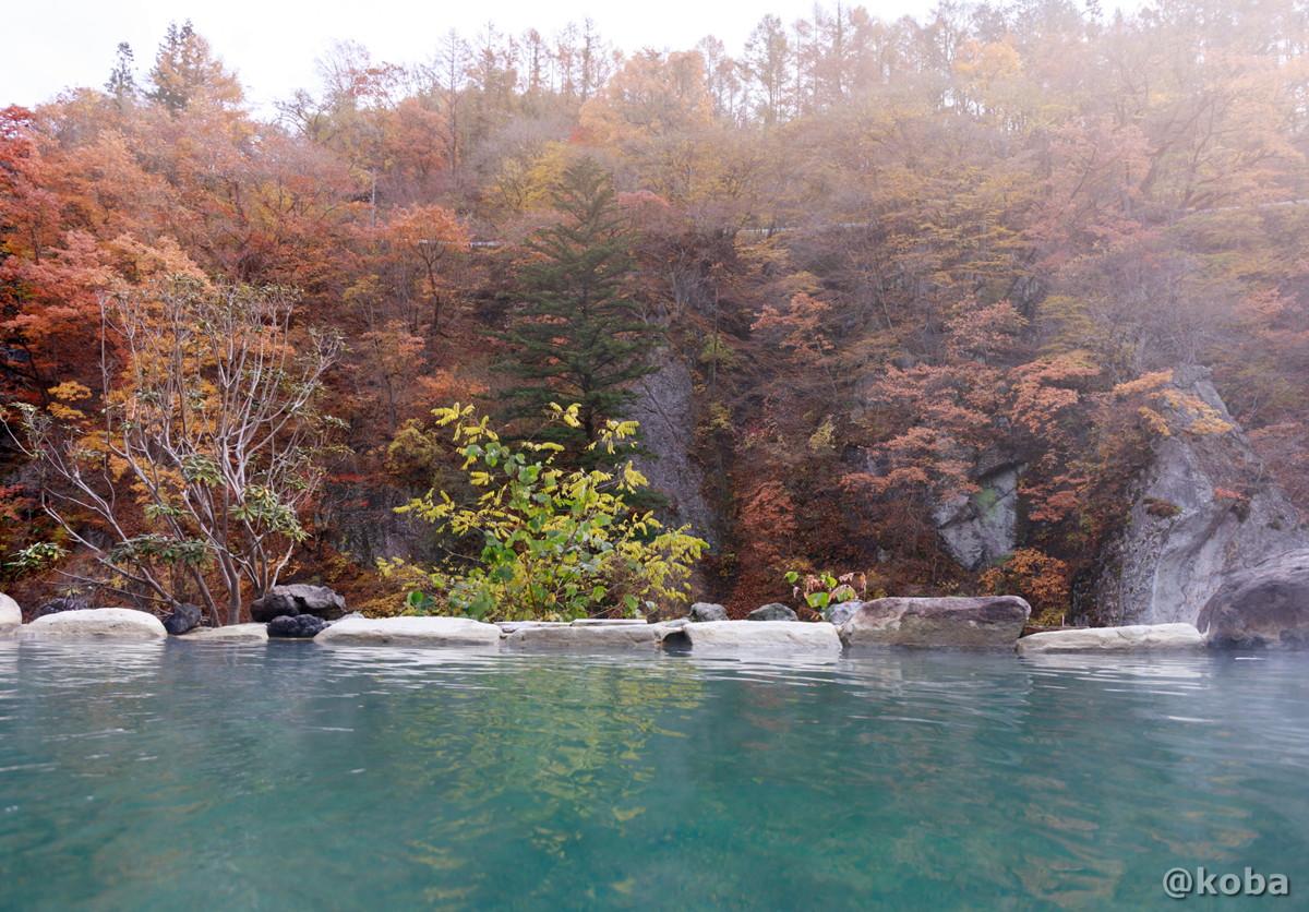 温泉と山と道路の写真(道路から覗ける)│京塚温泉・しゃくなげの湯 日帰り入浴│群馬県 ブログ