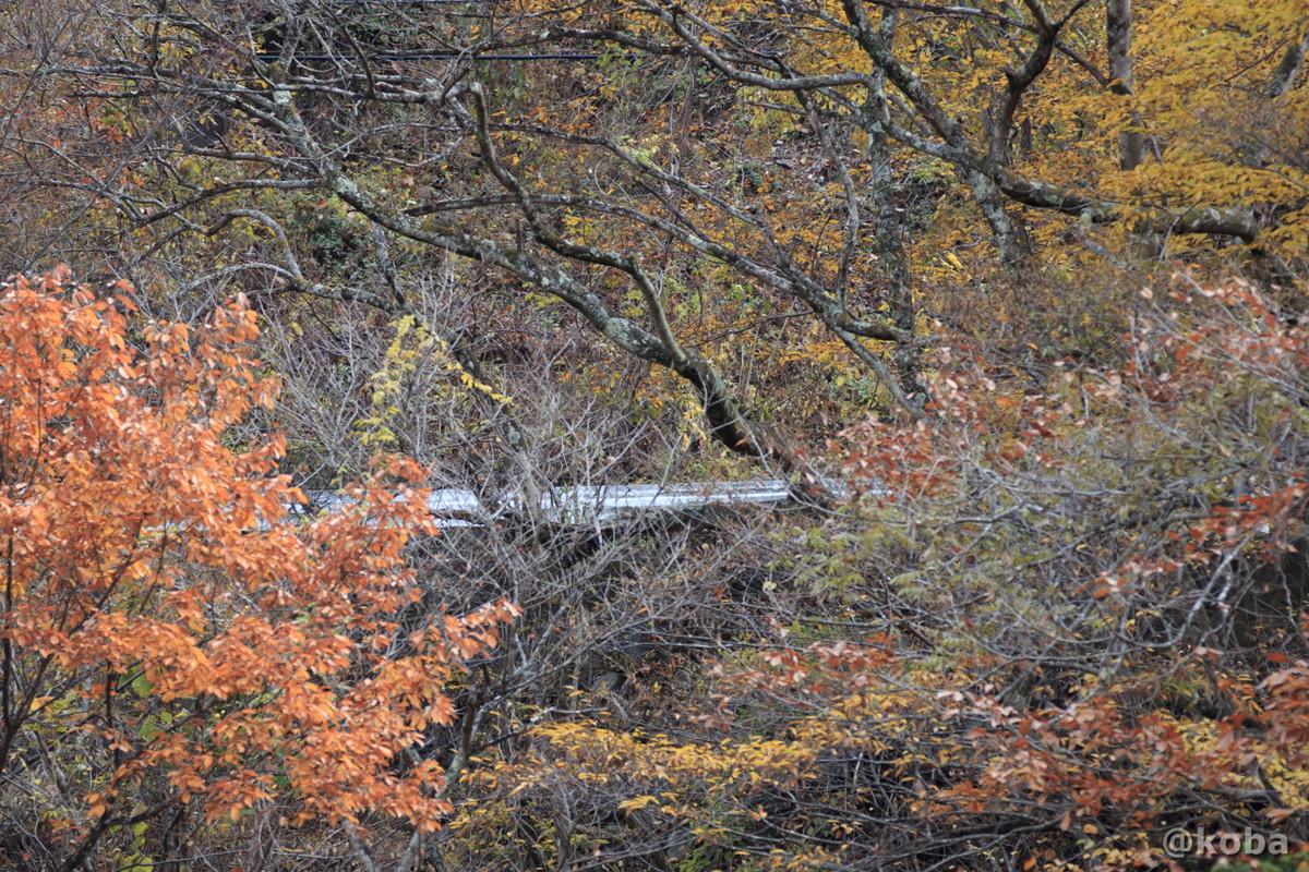 山道の白いガードレールの写真│京塚温泉・しゃくなげの湯 日帰り入浴│群馬県 ブログ