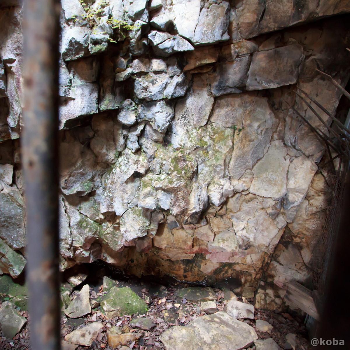 天然記念物 ヒカリゴケの写真│大岩不動尊(おおいわふどうそん)│群馬県 ブログ