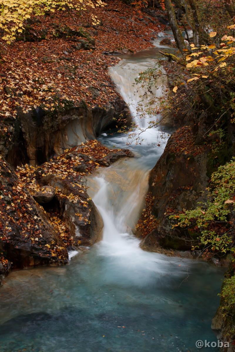 滝の写真│たんげ温泉 美郷館(みさとかん)│群馬県 吾妻郡