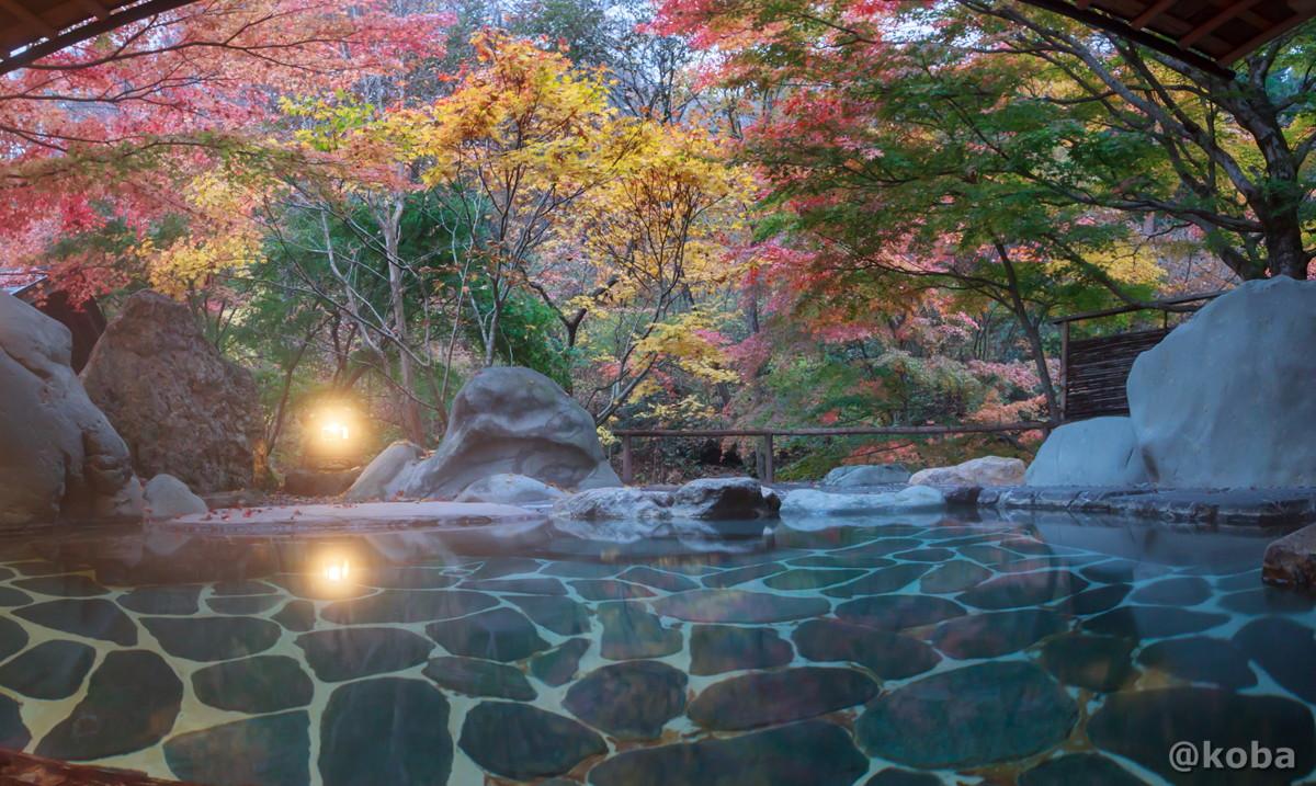月見の湯 紅葉と露天風呂の写真│たんげ温泉 美郷館(みさとかん)│群馬県 吾妻郡