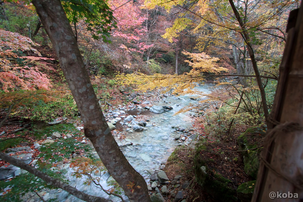 水がキレイな川│たんげ温泉 美郷館(みさとかん)│群馬県 吾妻郡