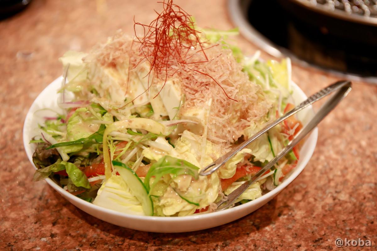 豆腐サラダ 580円の写真│炭火焼肉 矢つぐ(やつぐ)│東京都江戸川区・新小岩 ブログ