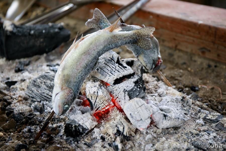 釣ったマスを炭火で焼いている写真|古戸中養魚場(ことちゅうようぎょじょう)|釣堀・虹マス釣り|国内旅行 栃木県 ブログ