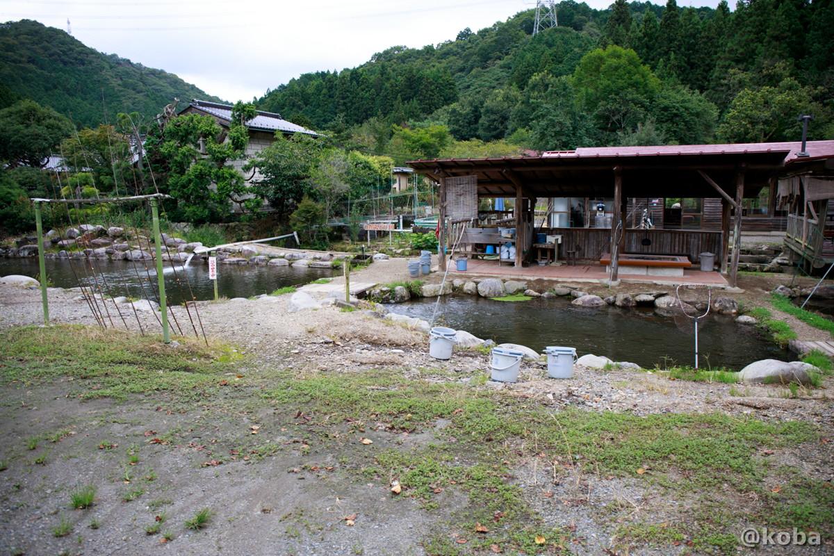 釣堀場の写真|古戸中養魚場(ことちゅうようぎょじょう)|釣堀・虹マス釣り|栃木県