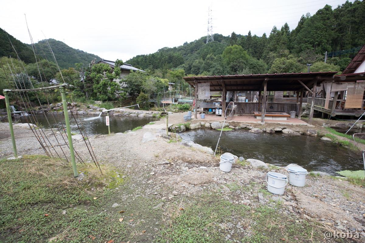 2箇所に別れた釣り堀場の写真|古戸中養魚場(ことちゅうようぎょじょう)|釣堀・虹マス釣り|栃木県