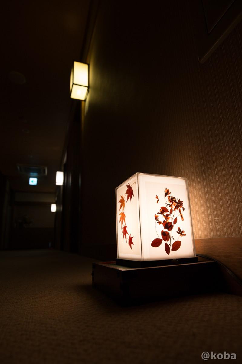 早朝の廊下の写真|滝沢温泉 滝沢館|日本秘湯を守る会|群馬県