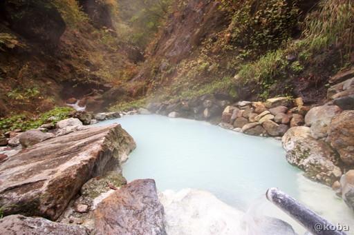 燕温泉 河原の湯 岩風呂の写真│新潟県