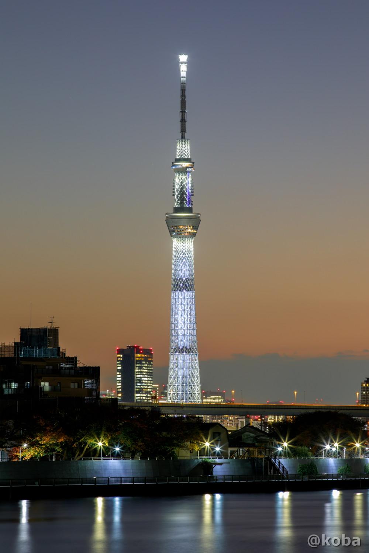 LED照明器具を最大限に近い明度で白色に点灯させ、輝くように明滅する交点照明と、展望台の赤がアクセントとなるシンプルな演出|東京 葛飾区|こばブログ