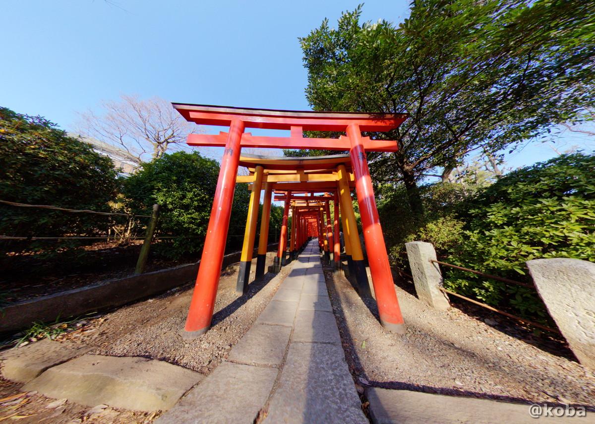 根津神社 千本鳥居の写真 2月|360°パノラマ撮影|東京都文京区根津|こば ブログ