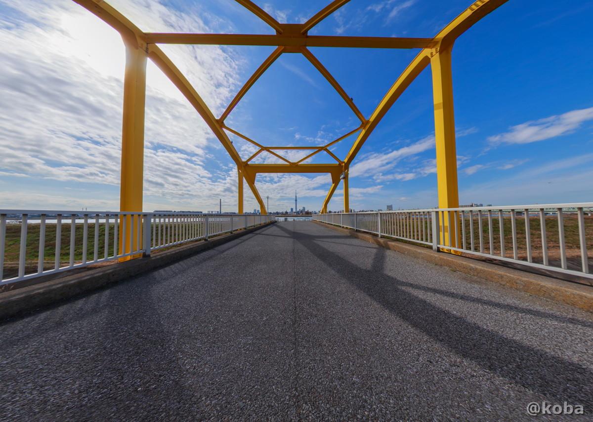 東四つ木避難橋付近から観た、スカイツリーです。|東京都墨田区押上|Canon EOS 6D_EF8-15mm F4L Fisheye USM|こばフォトブログ
