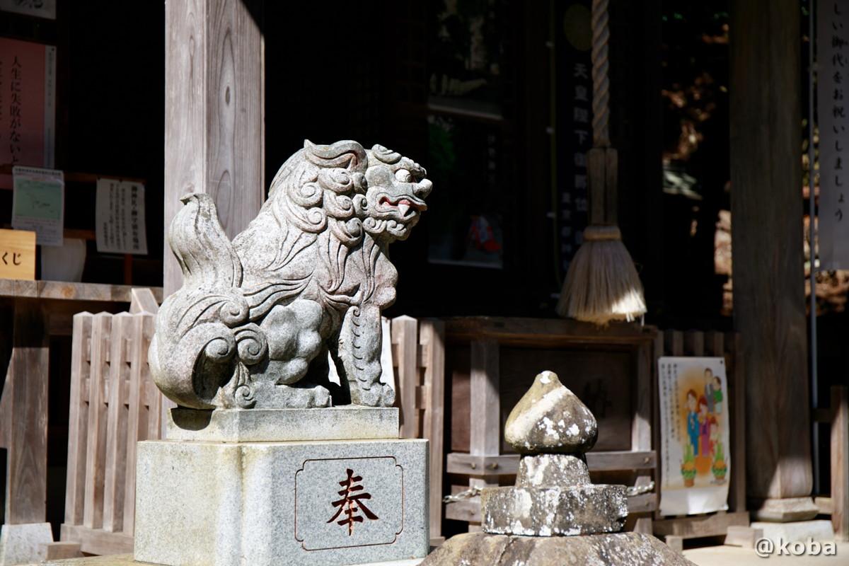 狛犬の写真│九頭龍神社(くずりゅうじんじゃ)│東京都西多摩郡檜原村│こばフォトブログ koba photo blog