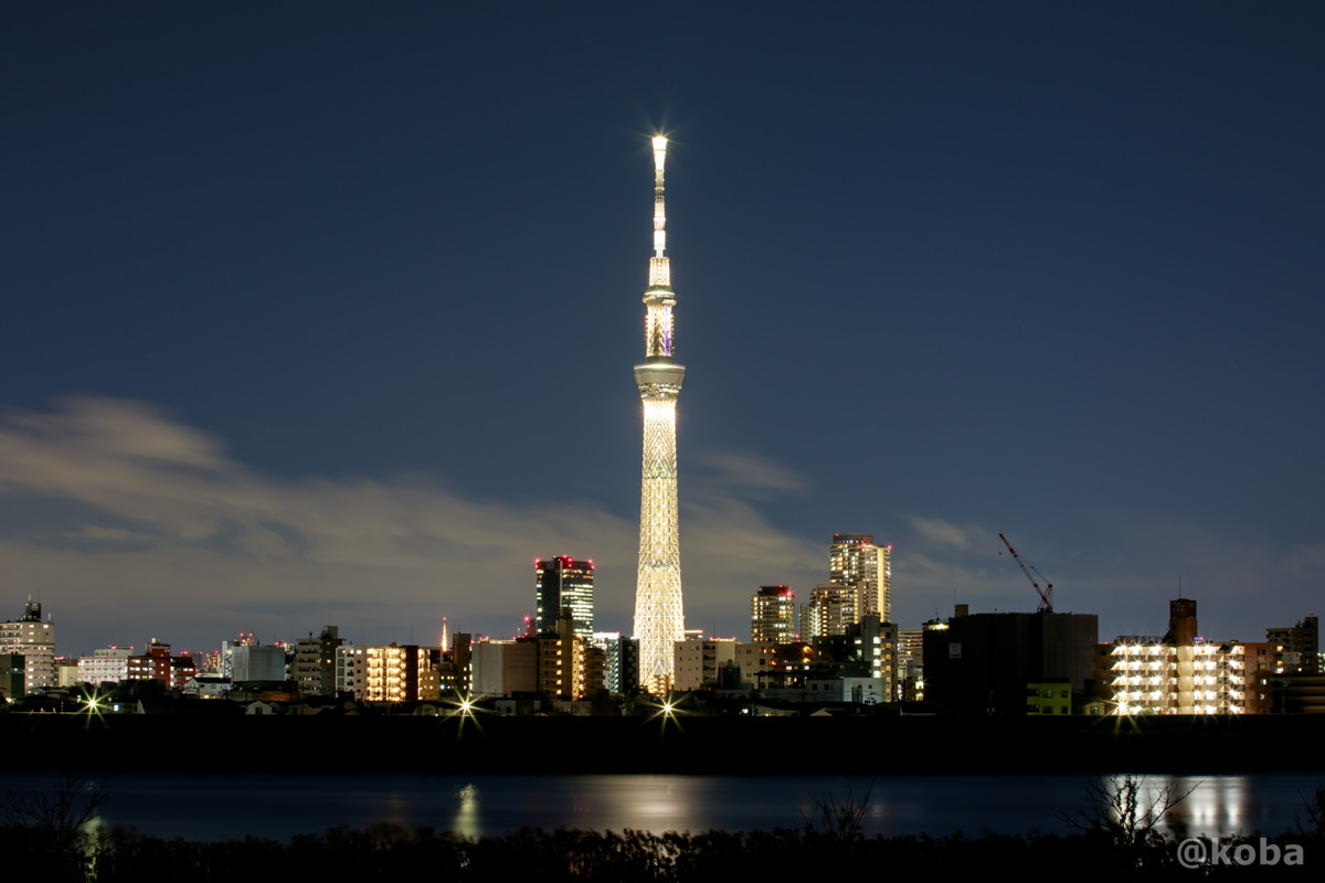 一日限定 桜ゴールド「東京2020オリンピック聖火リレー」のスタート100日前を記念したライティング|葛飾区・四ツ木(ヨツギ)|こばブログ