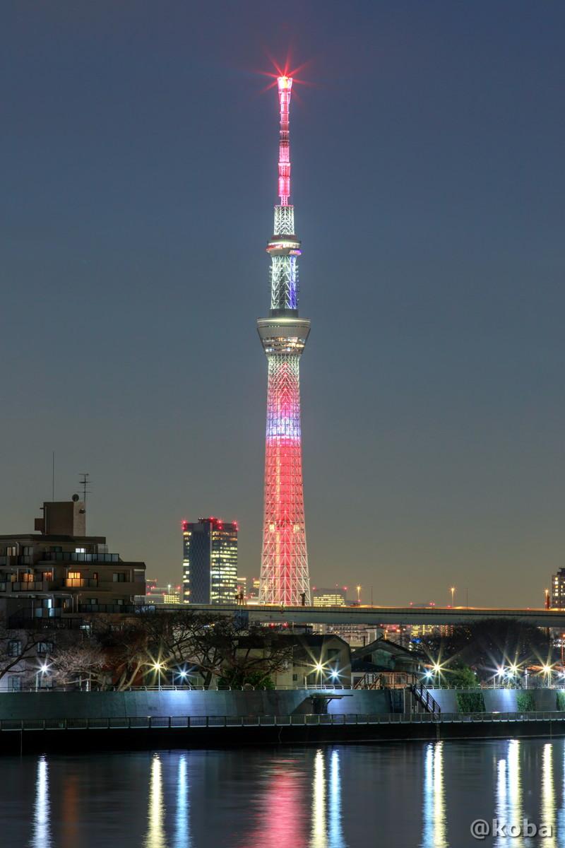 エヴァンゲリオン2号機『シン・エヴァンゲリオン劇場版』の特別ライティングです|東京スカイツリー 葛飾区・中川|こばフォトブログ