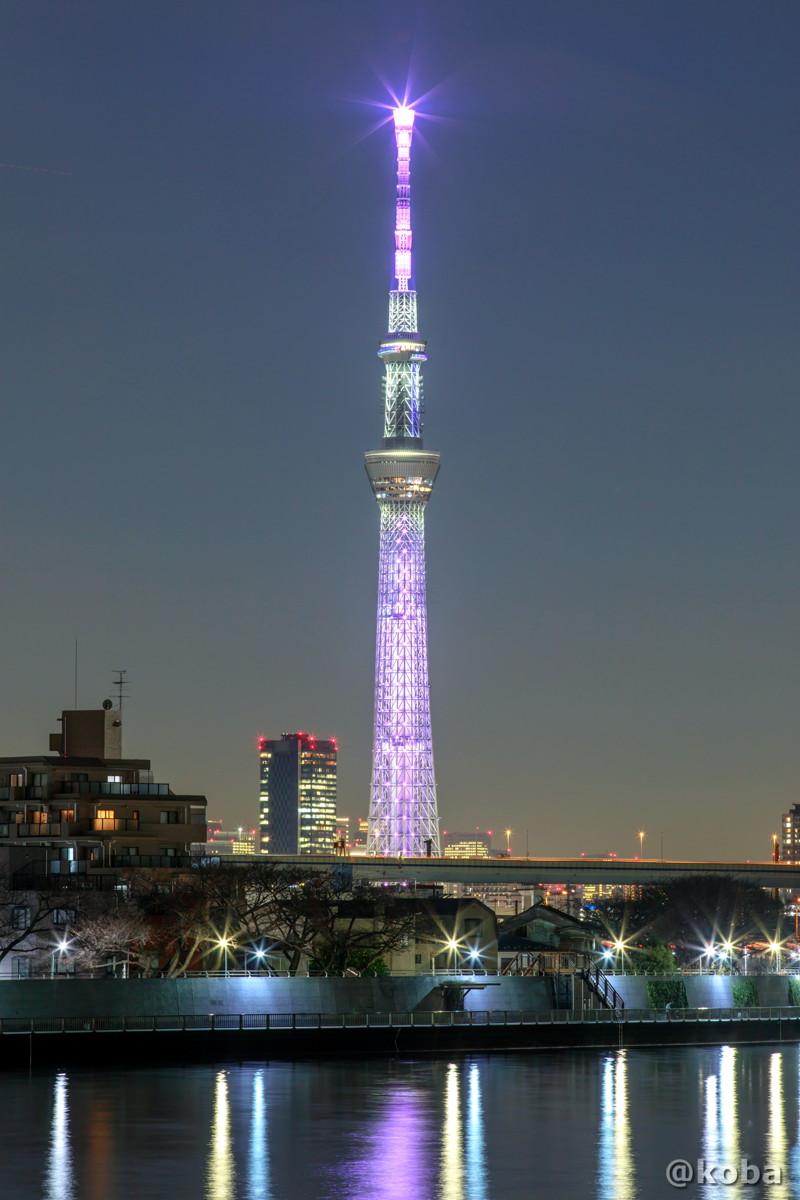 エヴァンゲリオン8号機『シン・エヴァンゲリオン劇場版』の特別ライティングです|東京スカイツリー 葛飾区・中川|こばフォトブログ