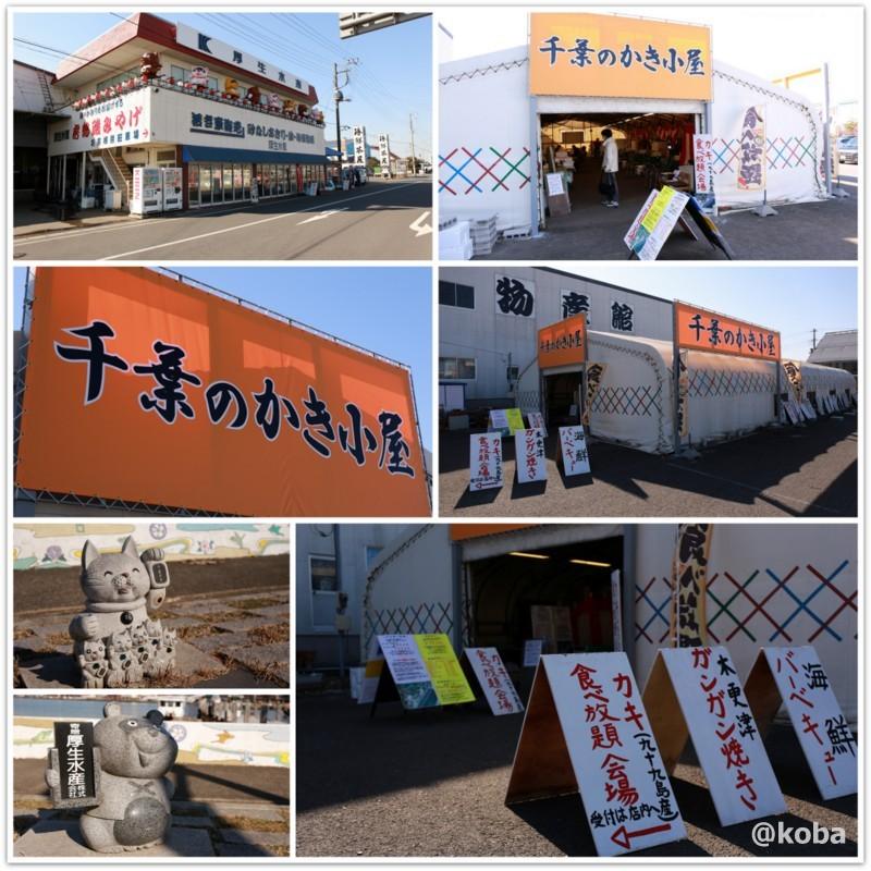 厚生水産 木更津富士見営業所 千葉のかき小屋