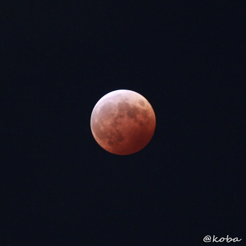 皆既月食 2014 赤褐色の月