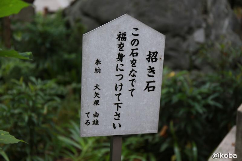 2014-10-04_b017.jpg