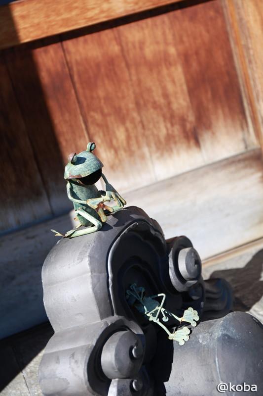 新小岩 うちだ カエル